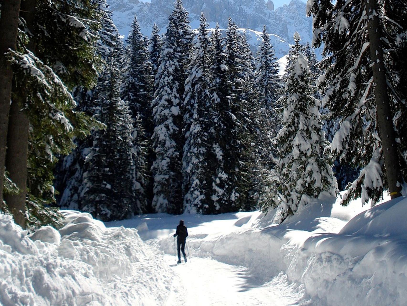 Winter walk in the Ciamin Valley
