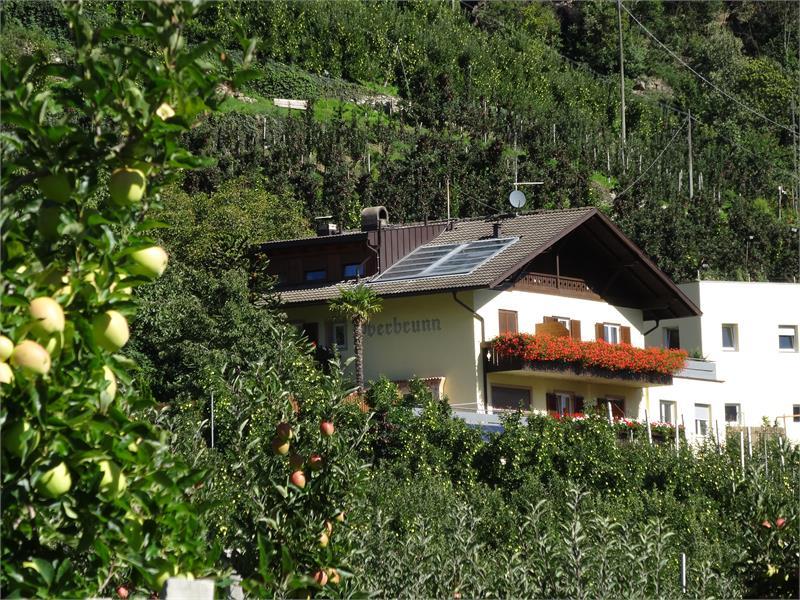 Oberbrunnhof