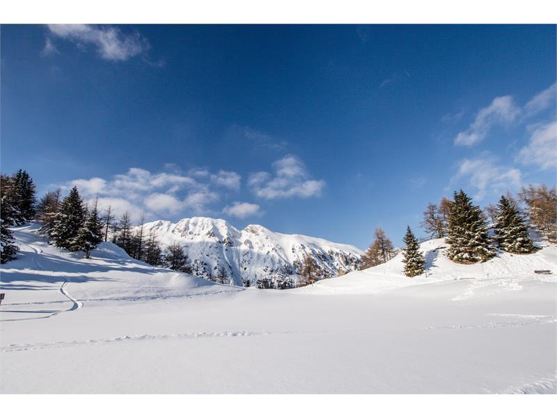 Rosskopf ski touring