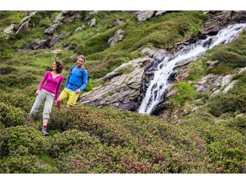 Alpine excursion at the foot of the Hirzer