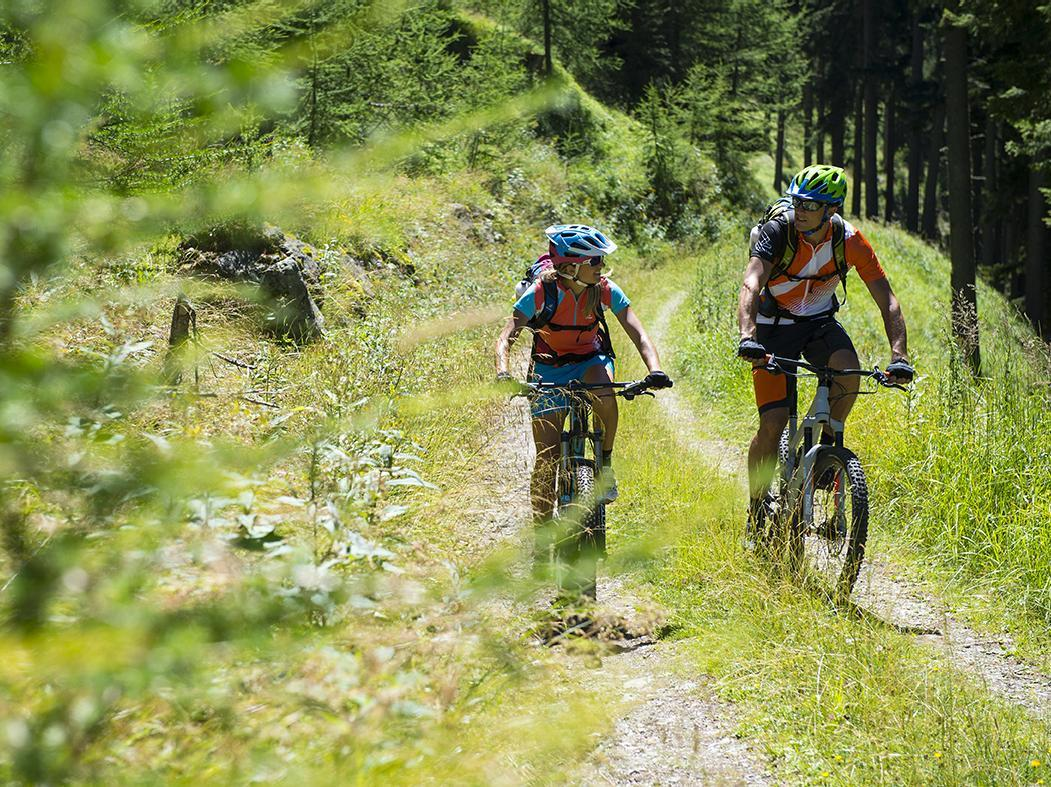 Shuttle bis Freiberg-Marzoner Alm-Lupo Trail