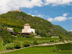 Rovine di Castel Boymont