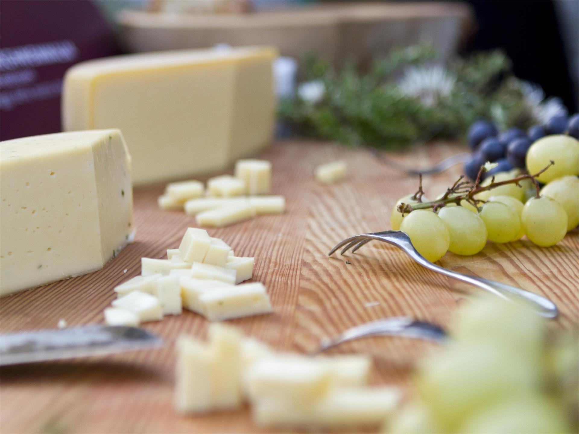 South Tyrolean alpine cheese tasting