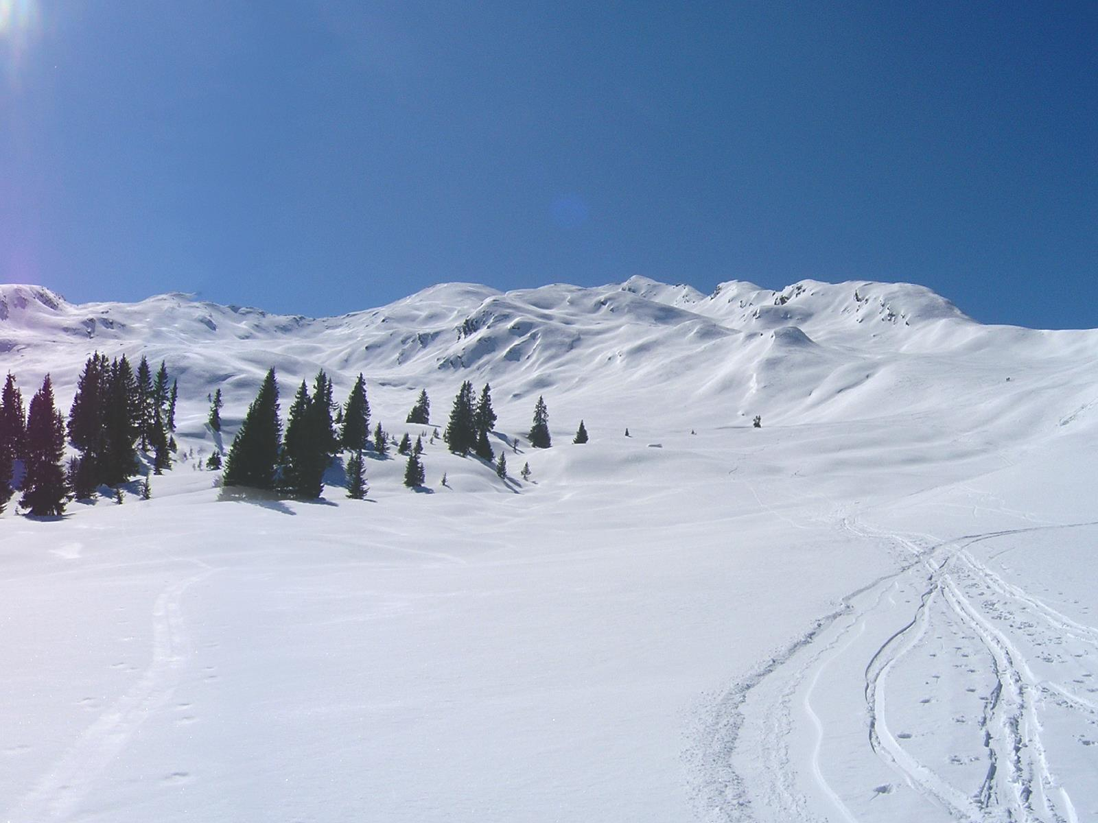 Fleckner summit ski tour