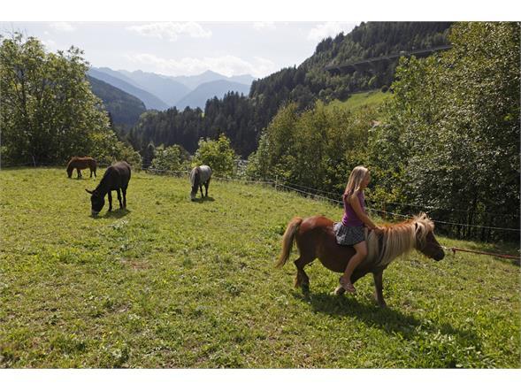 Beim Ponyreiten