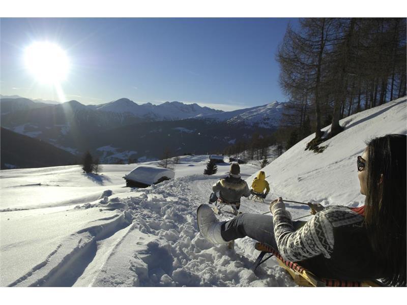 Pista slittini Reinswalder Wiesn