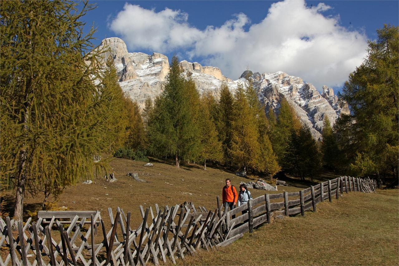 "Easy Hike on the ""Tru di Lersc"" (Larch Trail) in San Cassiano"