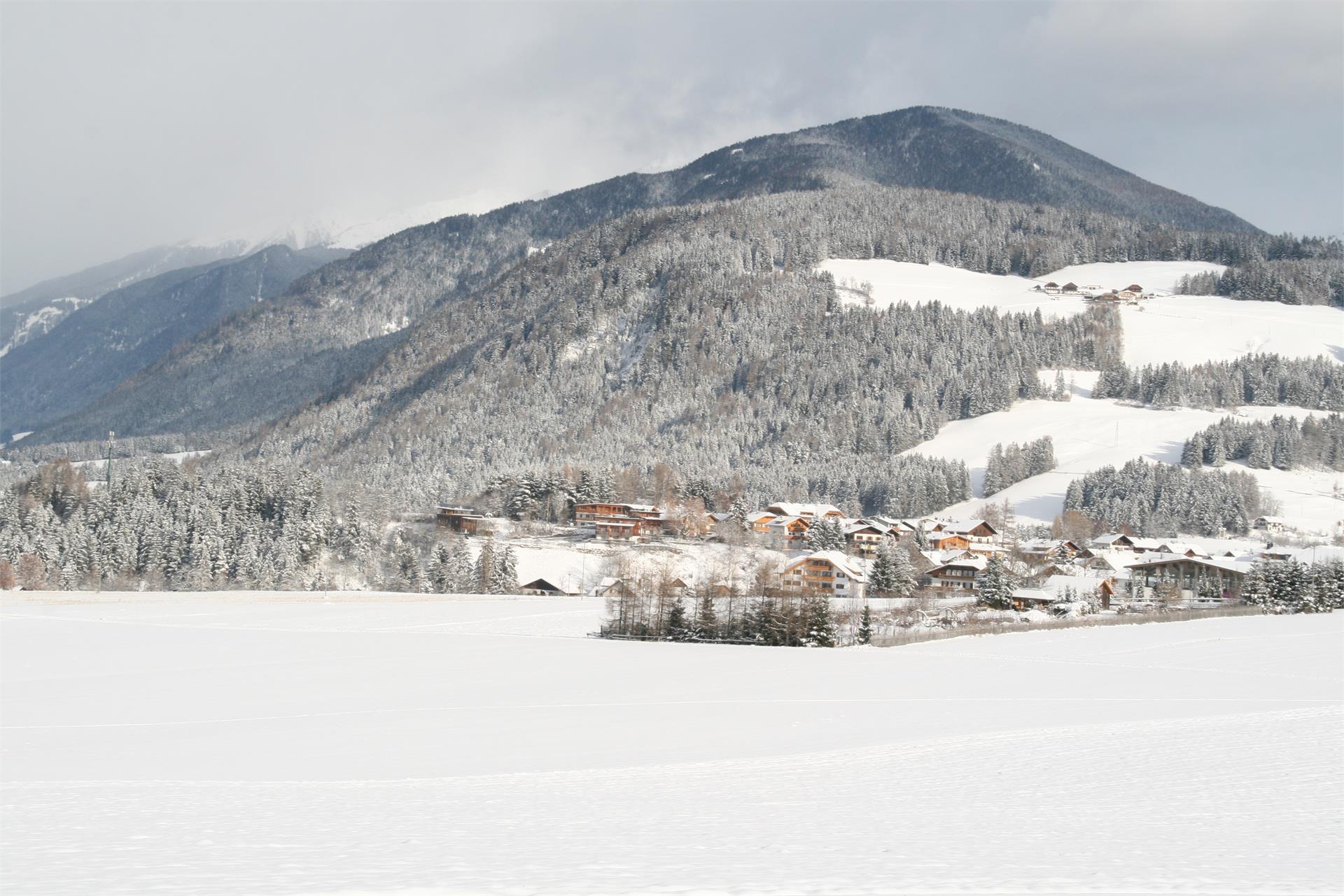 "Passeggiata invernale Voppichl - monumento ""Peststöckl"" - Valdaora di Sotto"