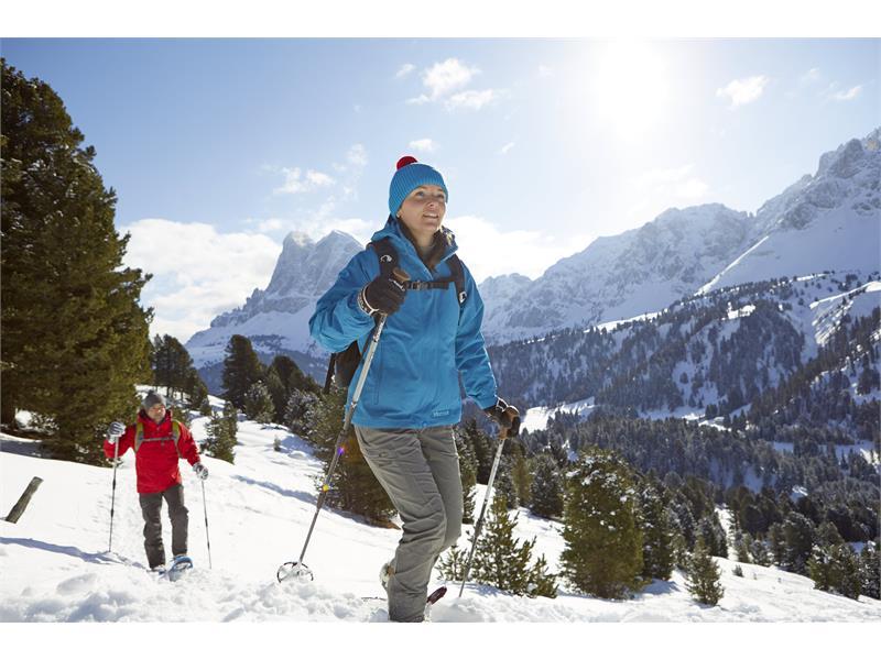 Snow-shoe hiking Alpe di Luson/Lüsner Alm