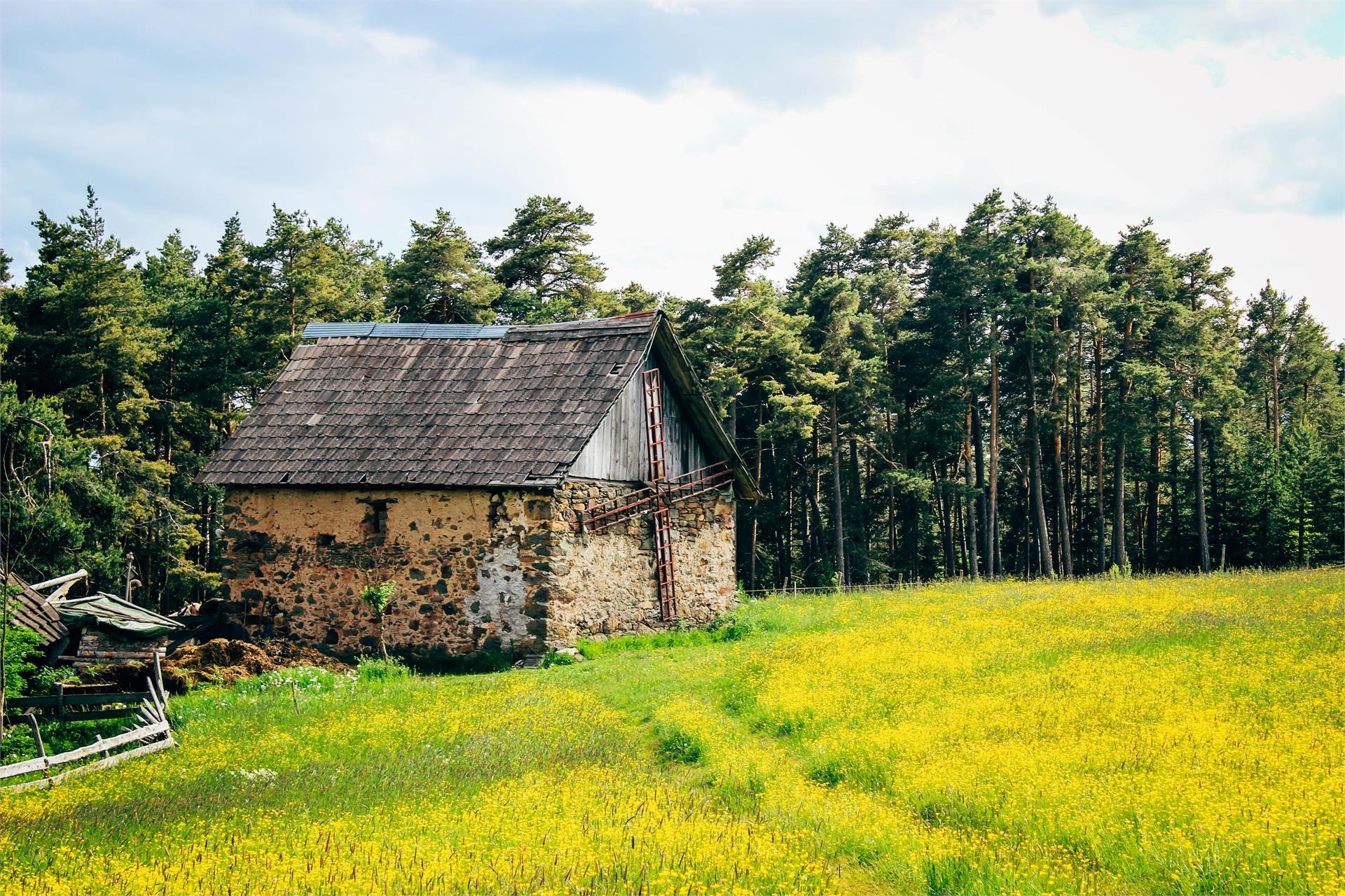 Little house on the farm area