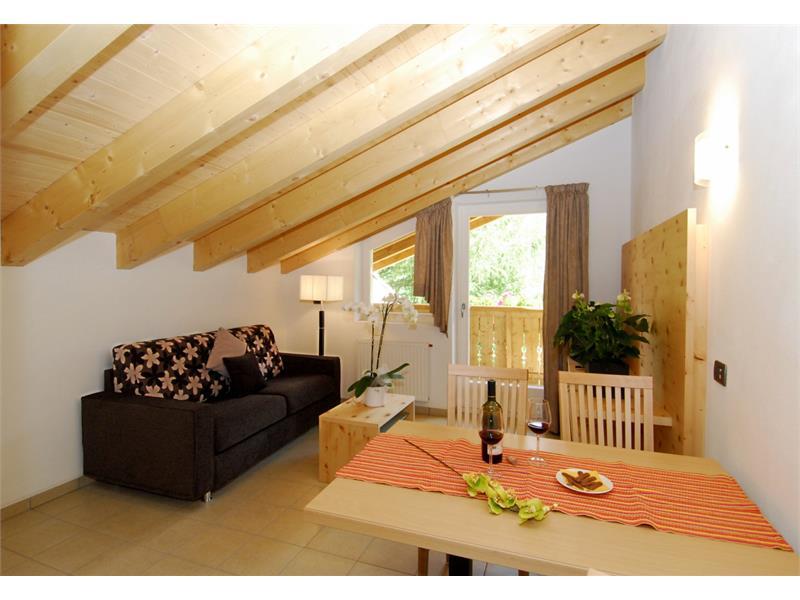 Living area App. Swiss pine