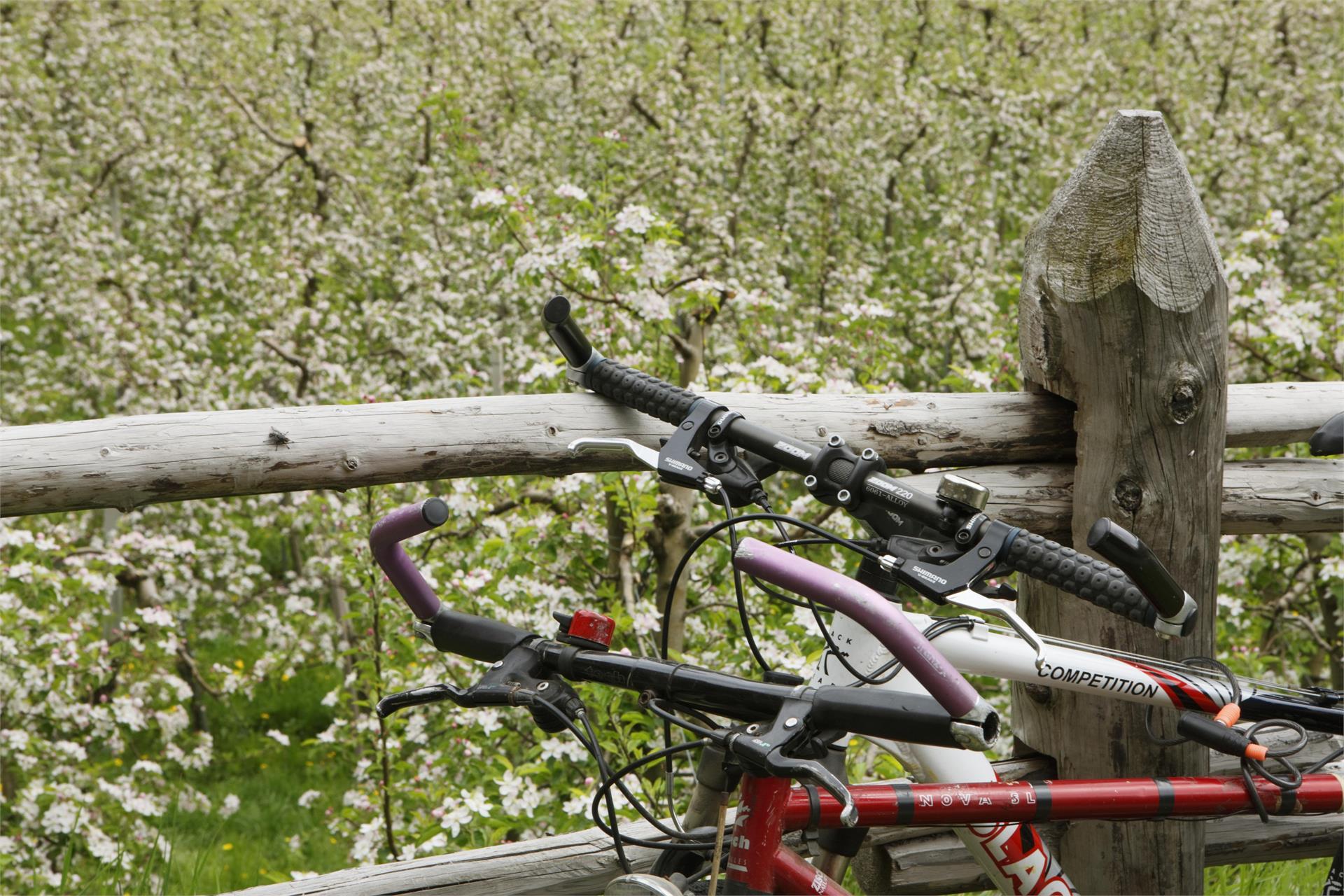Bike Route from Naturns to Merano/Meran