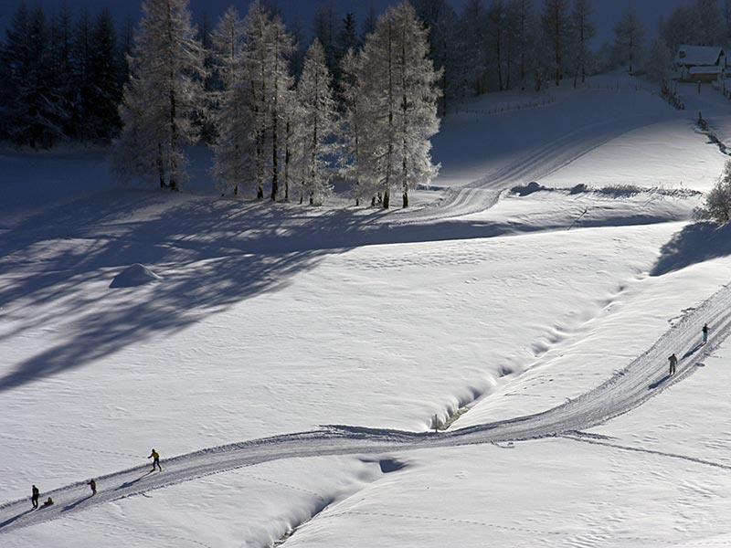Selva dei Molini / Lappago - Mühlwald / Lappach