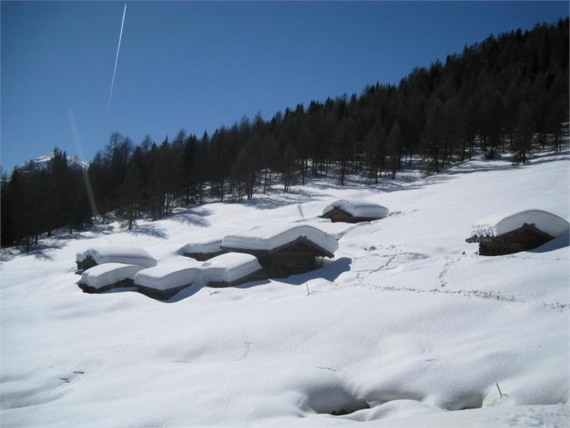 Winter at the Alm
