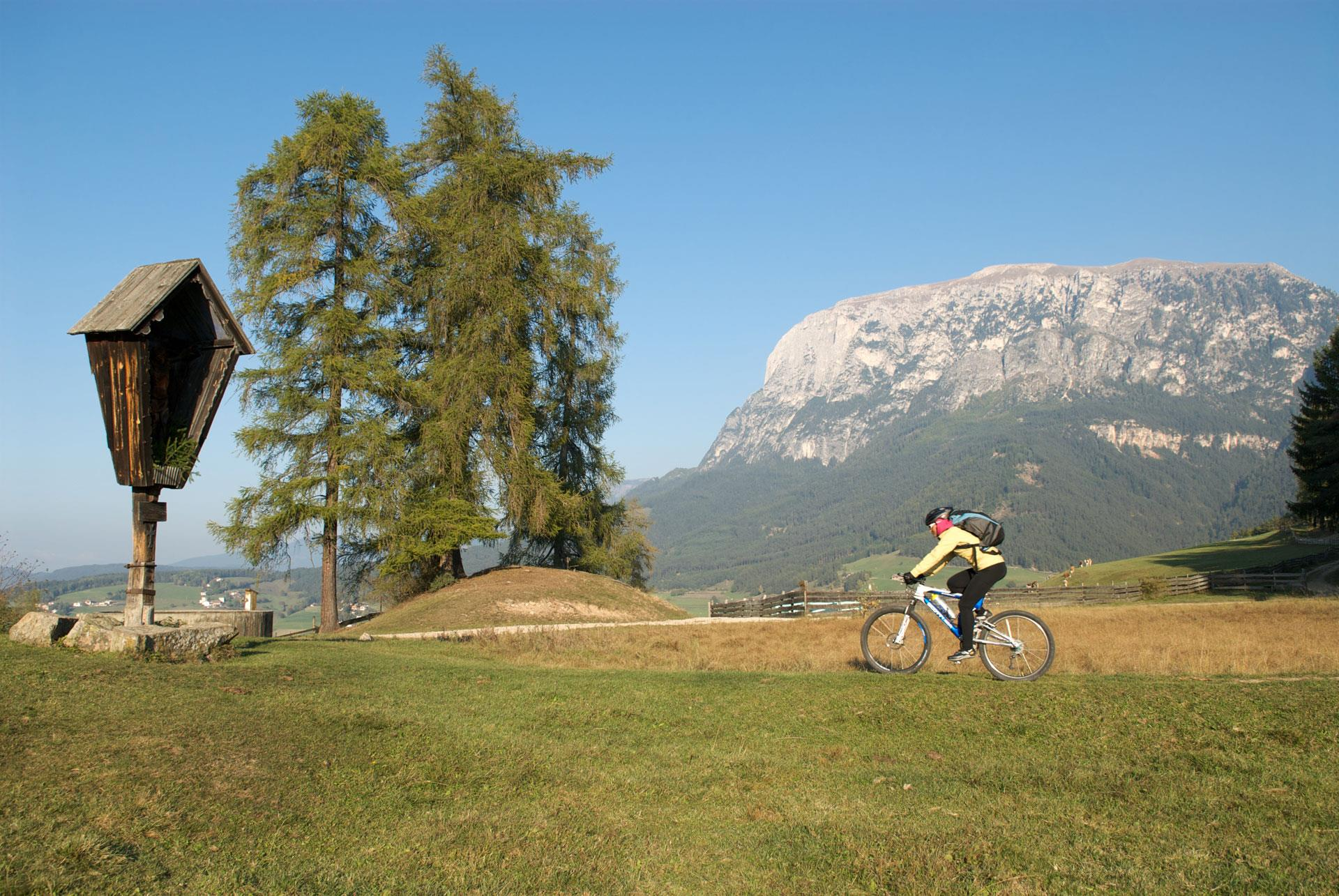 MTB-Tour Monte Cavone/Tschafon