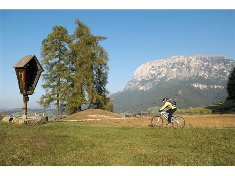 Monte Cavone/Tschafon