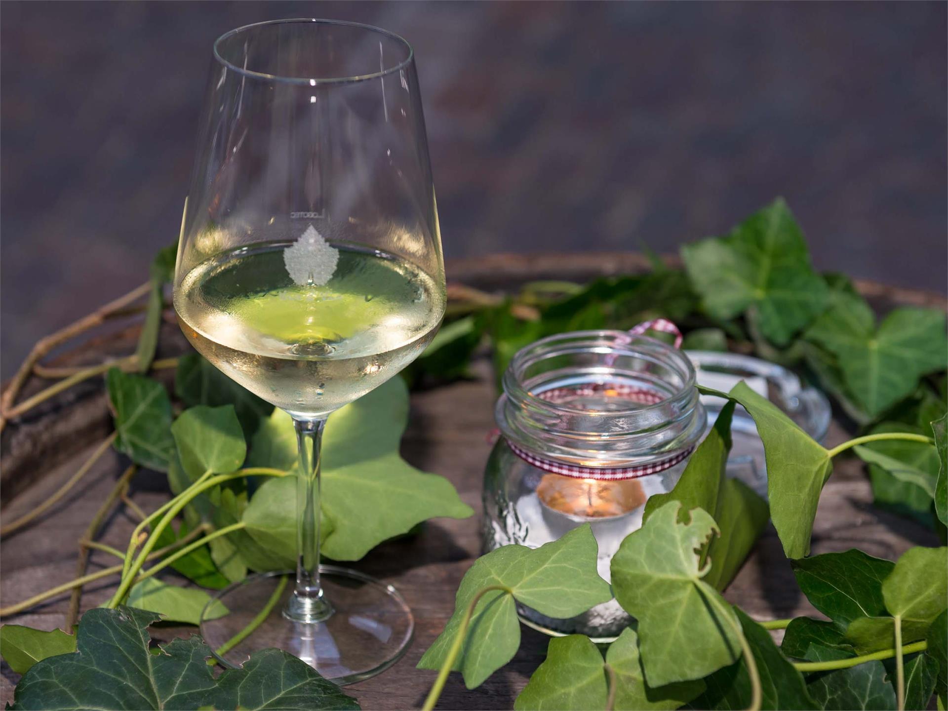 Weinkellerei Warasin Alois