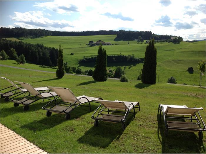lawn for sunbathing