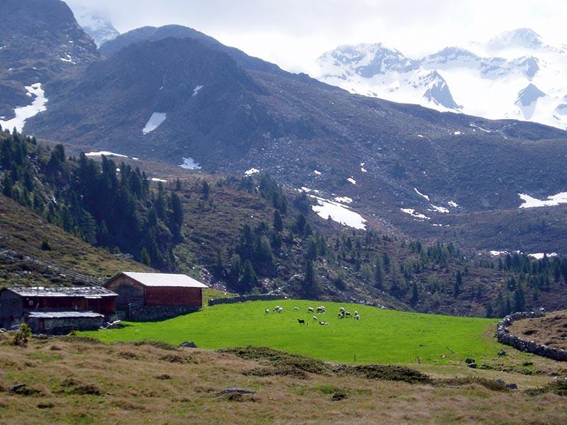 Arthur-Hartdegen-Höhenweg