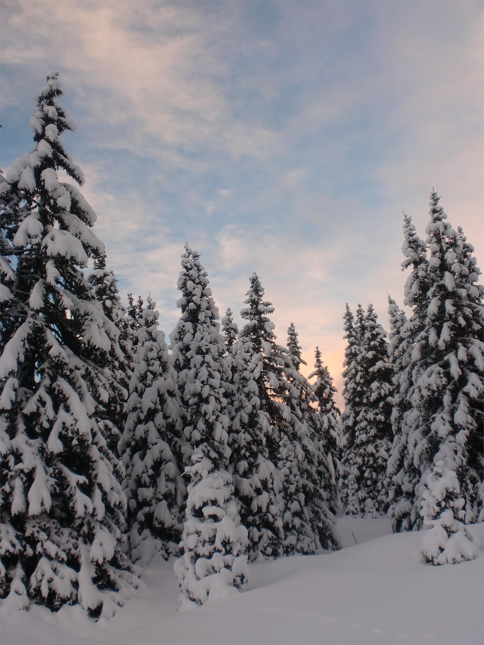 Escursione invernale al Rifugio Genziana