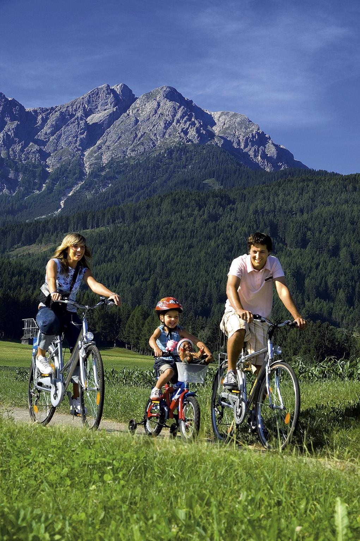 Bike rent - Papin Sport