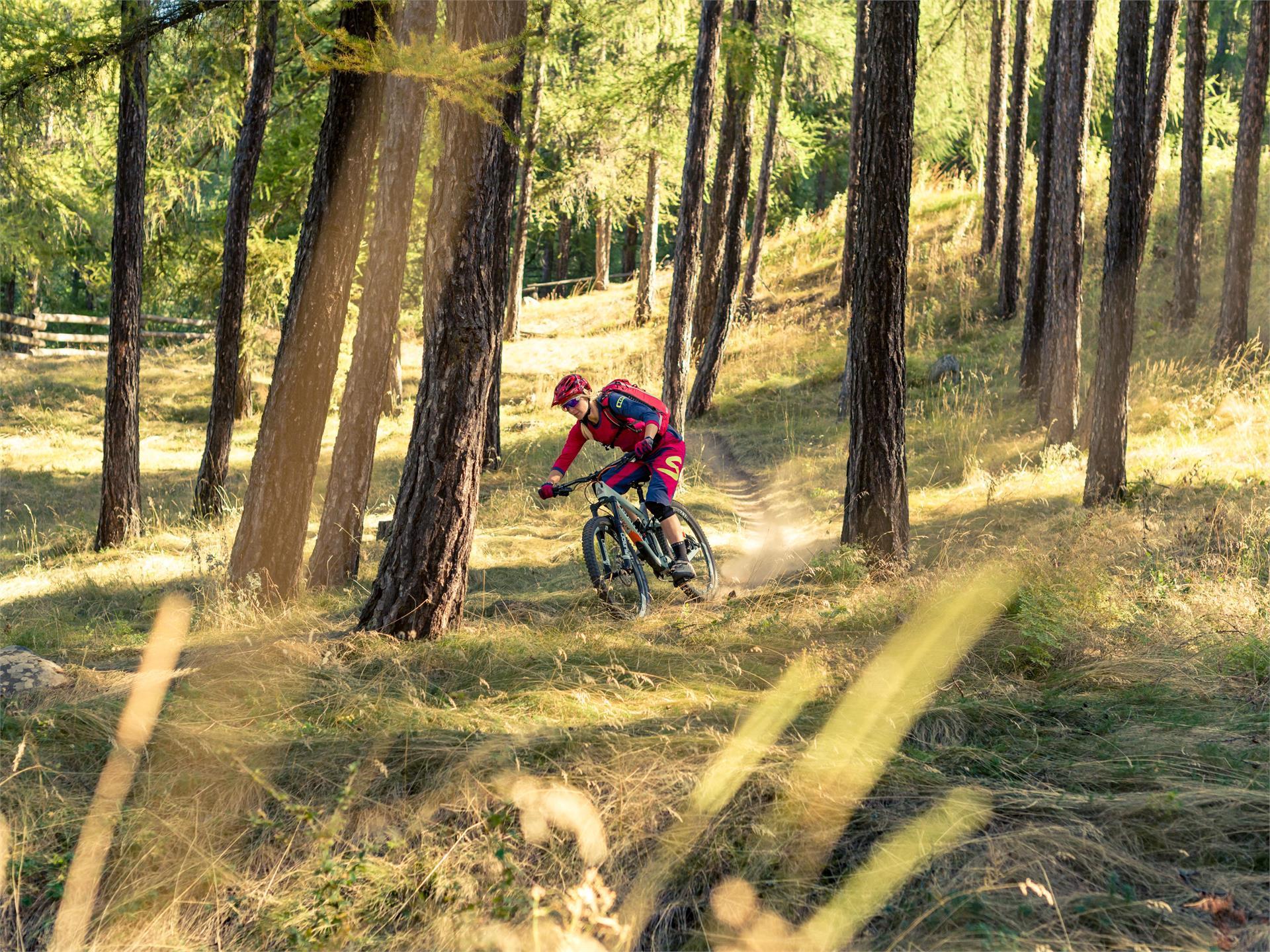 Tschilli-Trail