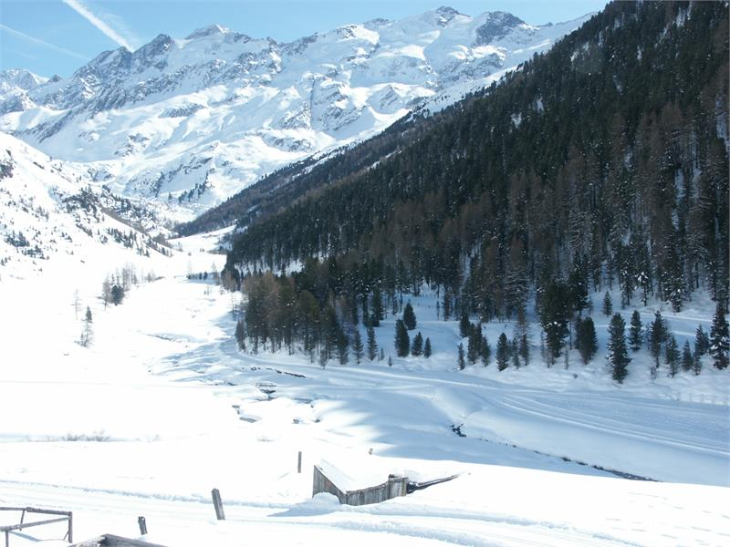winter trekking to Malga di Melago