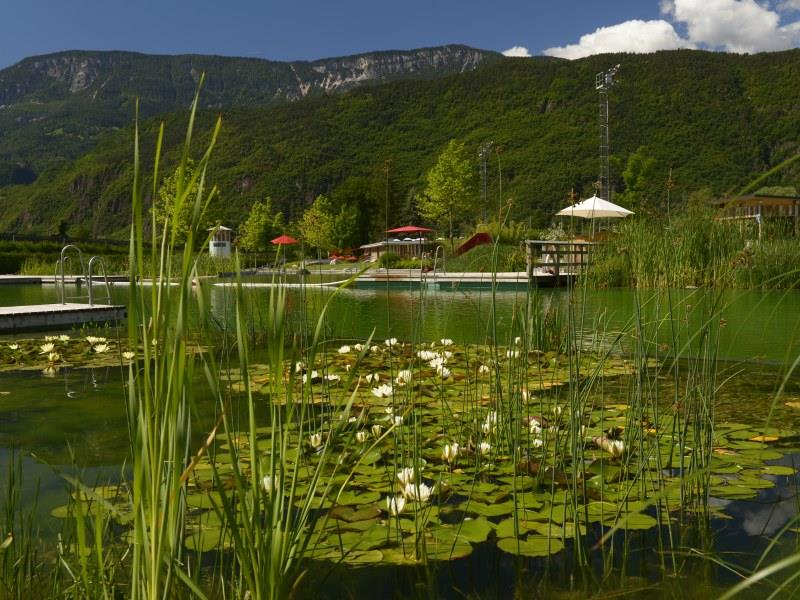 Naturbad Gargazon, Georg Mayr