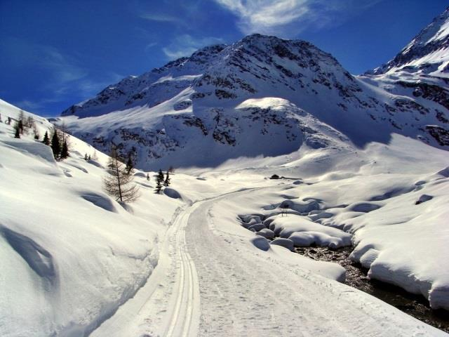 Lazinsertal Valley Cross-Country Skiing Trail
