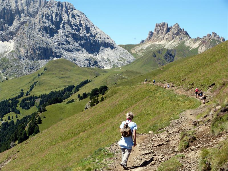 Hiking areas are easily accessible from the hotel - Hotel Appatements Perwanger, Fié allo Sciliar