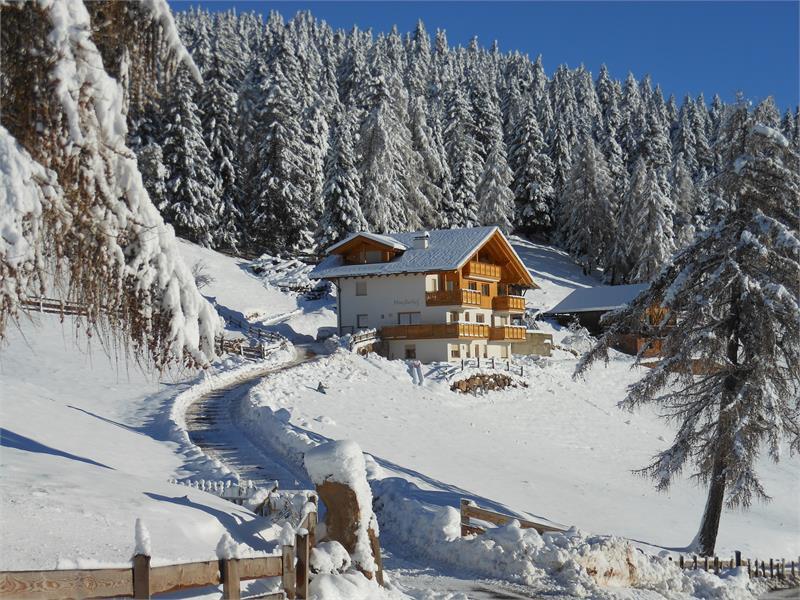 Mandlerhof un esperienza in inverno