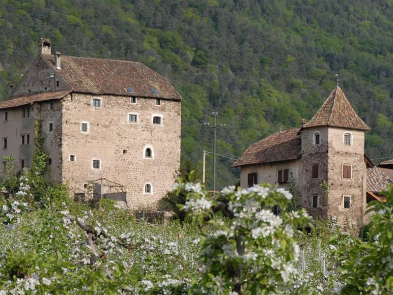 Museum Castle Moos-Schulthaus