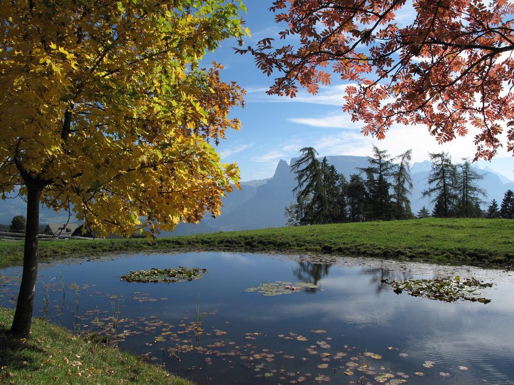 Herbst am Ritten