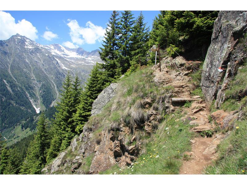 Meraner Höhenweg Ost - Über die Hohe Wiege zum Hochganghaus