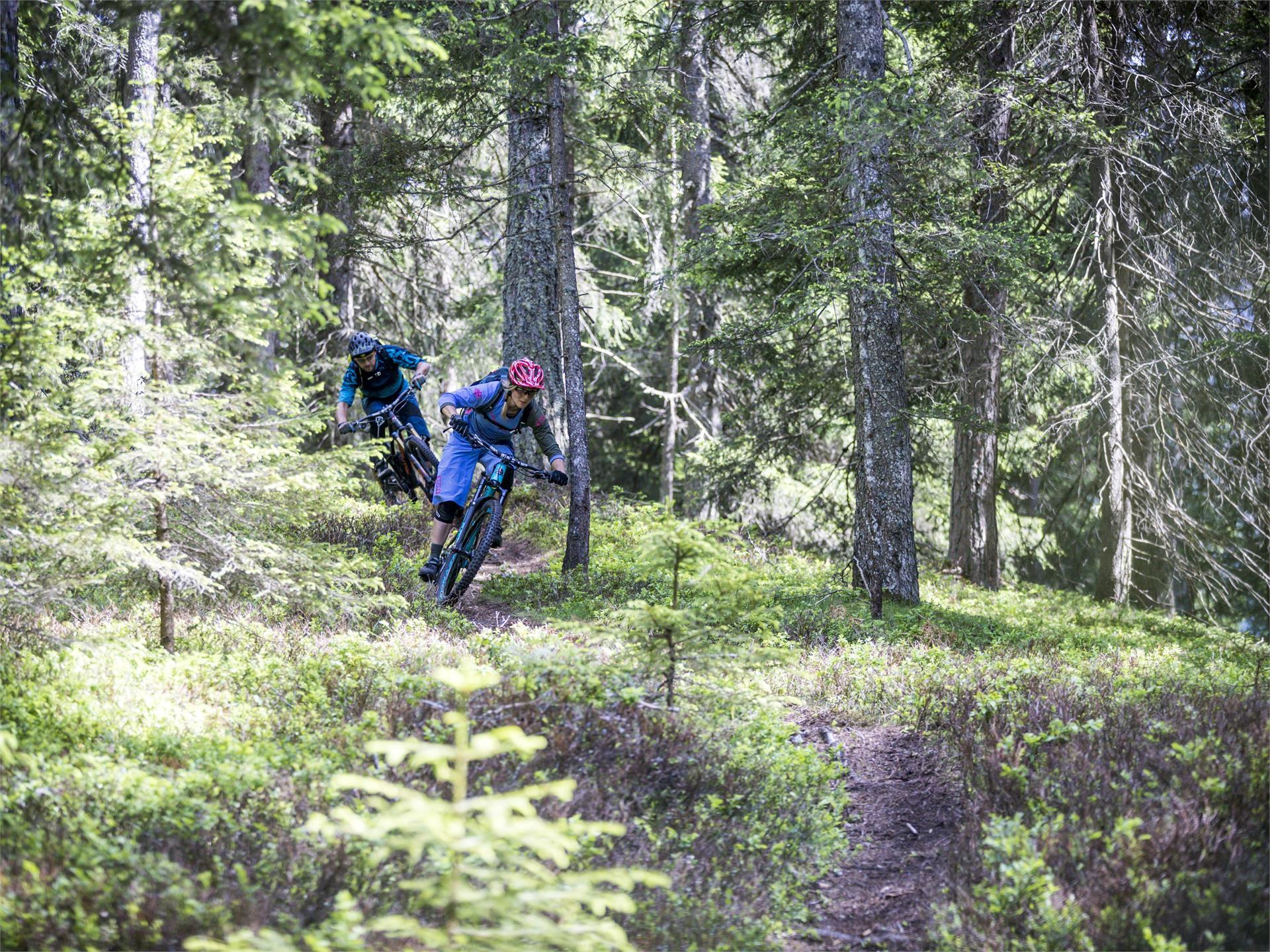 MTB Tour Ratsberg (044)