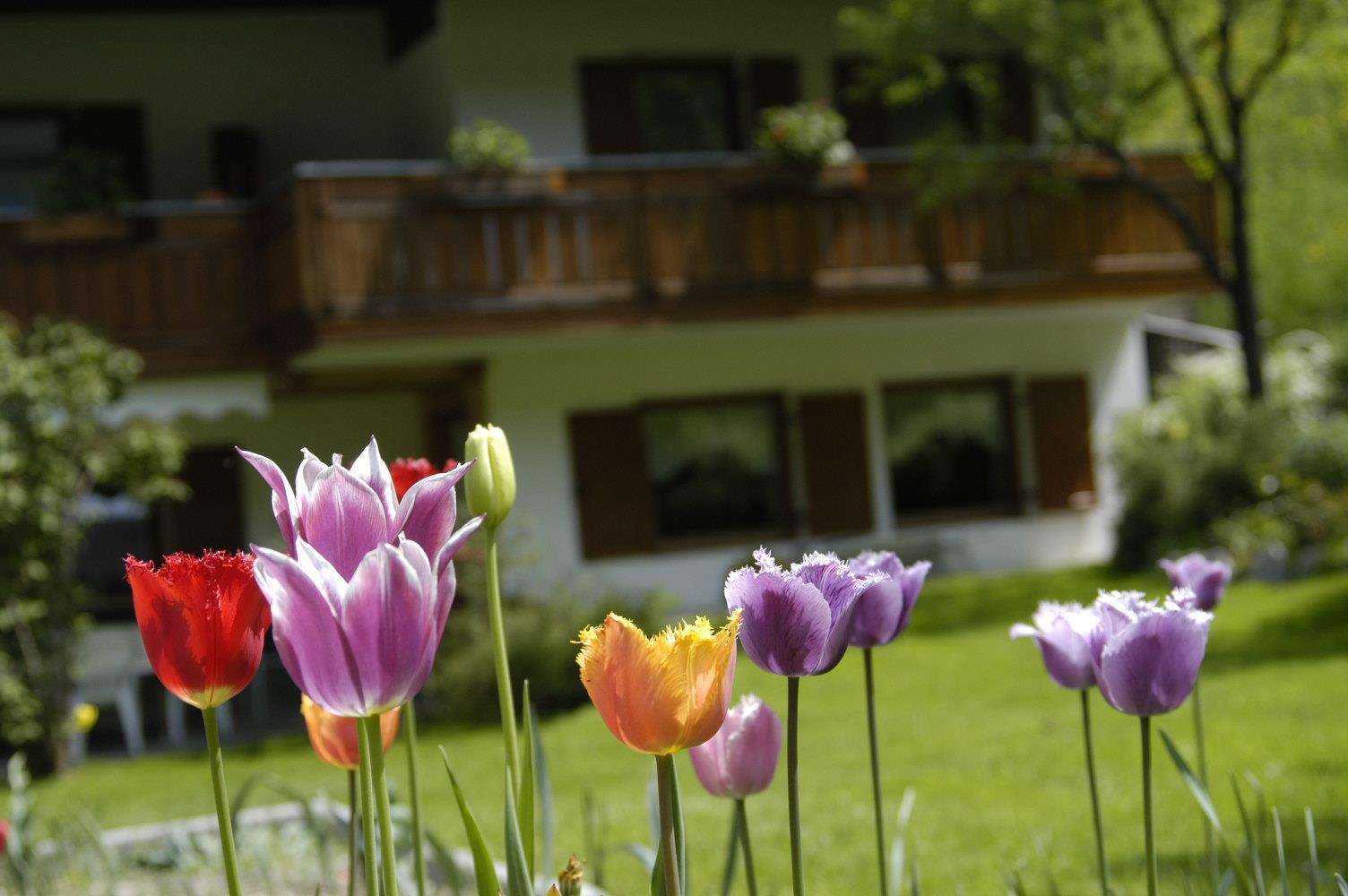 Haus Lampacher - giardino