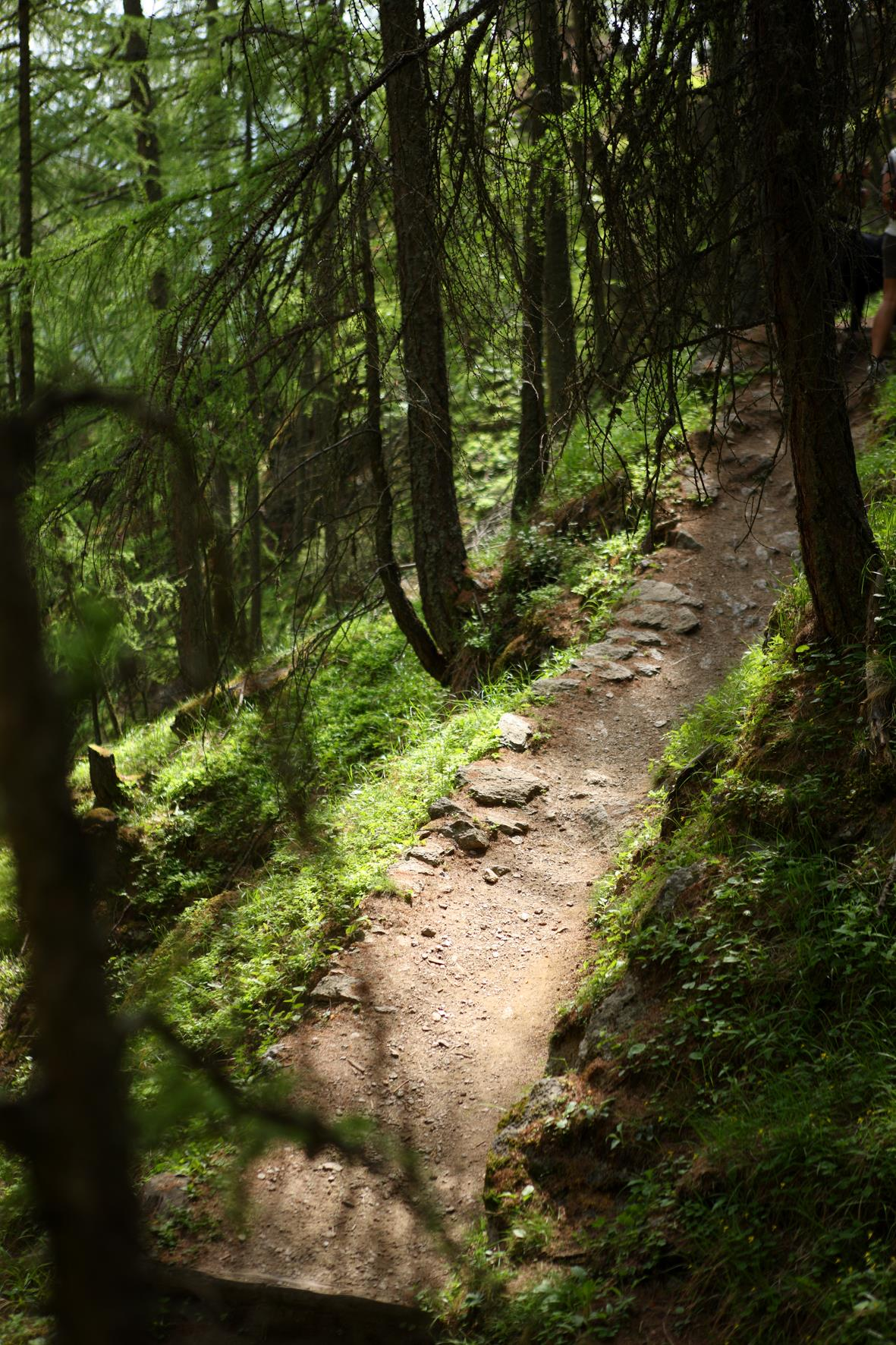 Aschbach/Rio Lagundo - Naturnser Alm/Malga di Naturno – Vigiljoch/Monte San Vigilio