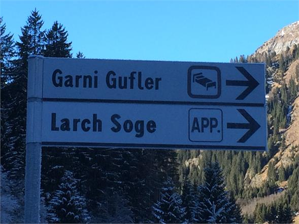 Larch Soge