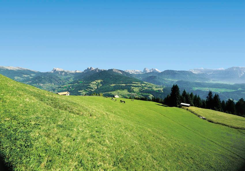 Circular route Alp of Villanders/Villandro