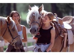 Horse farm Unterwirt