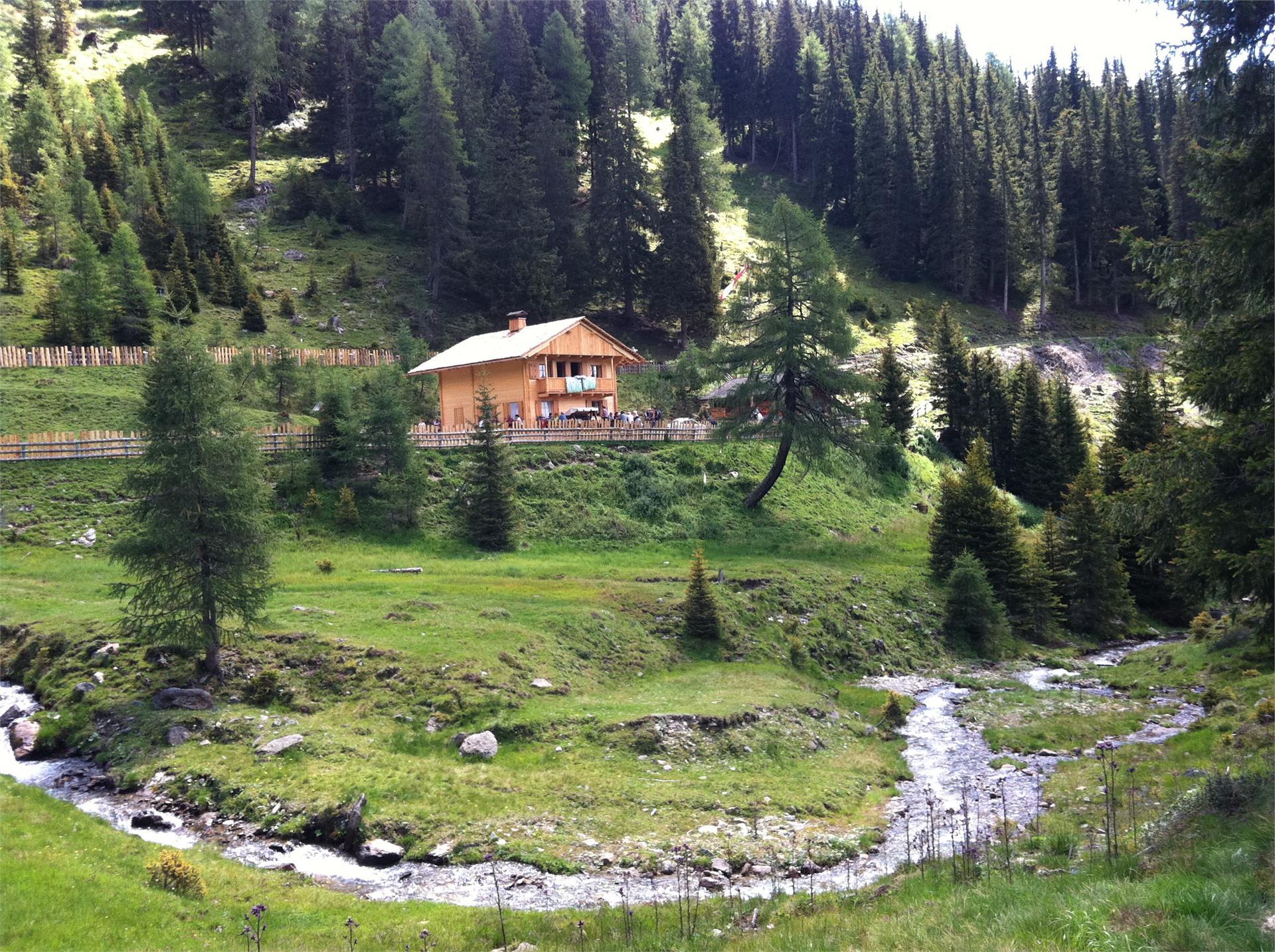 Sommerwanderung: Silvesteralm und Silvesterkapelle