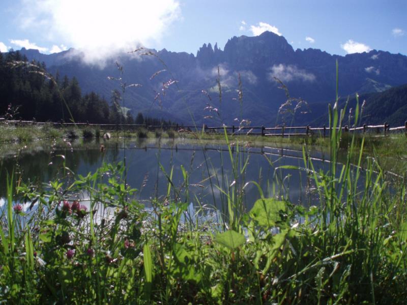 patrimonio naturale unesco - favoloso