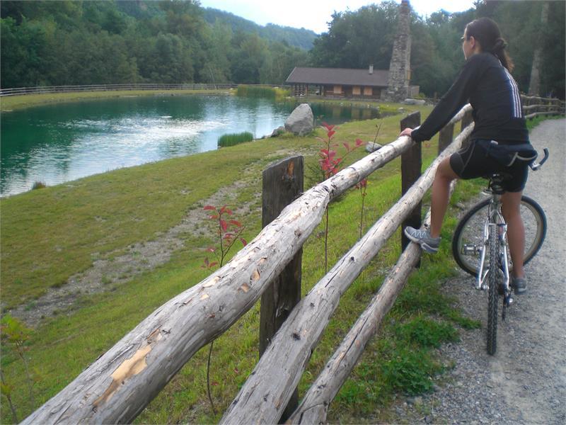 Panoramatour Schlanders-Laas