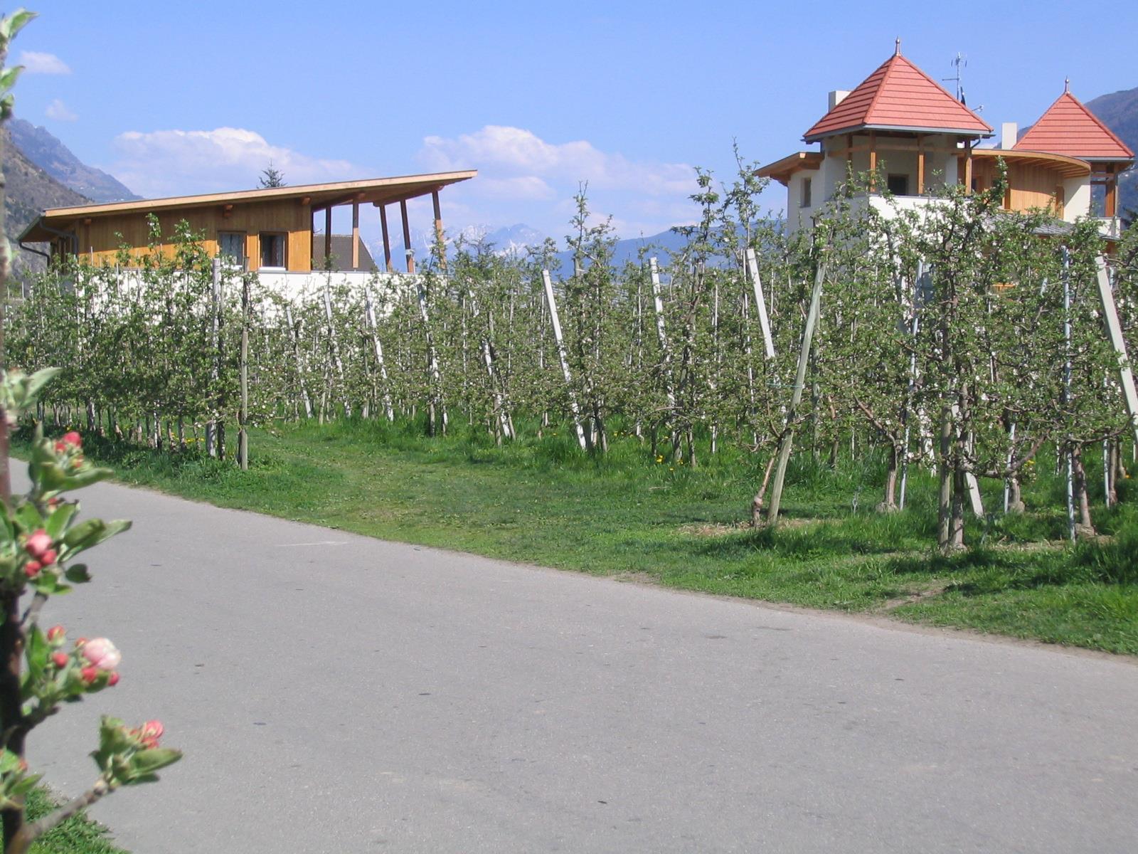 Weiss-Hof
