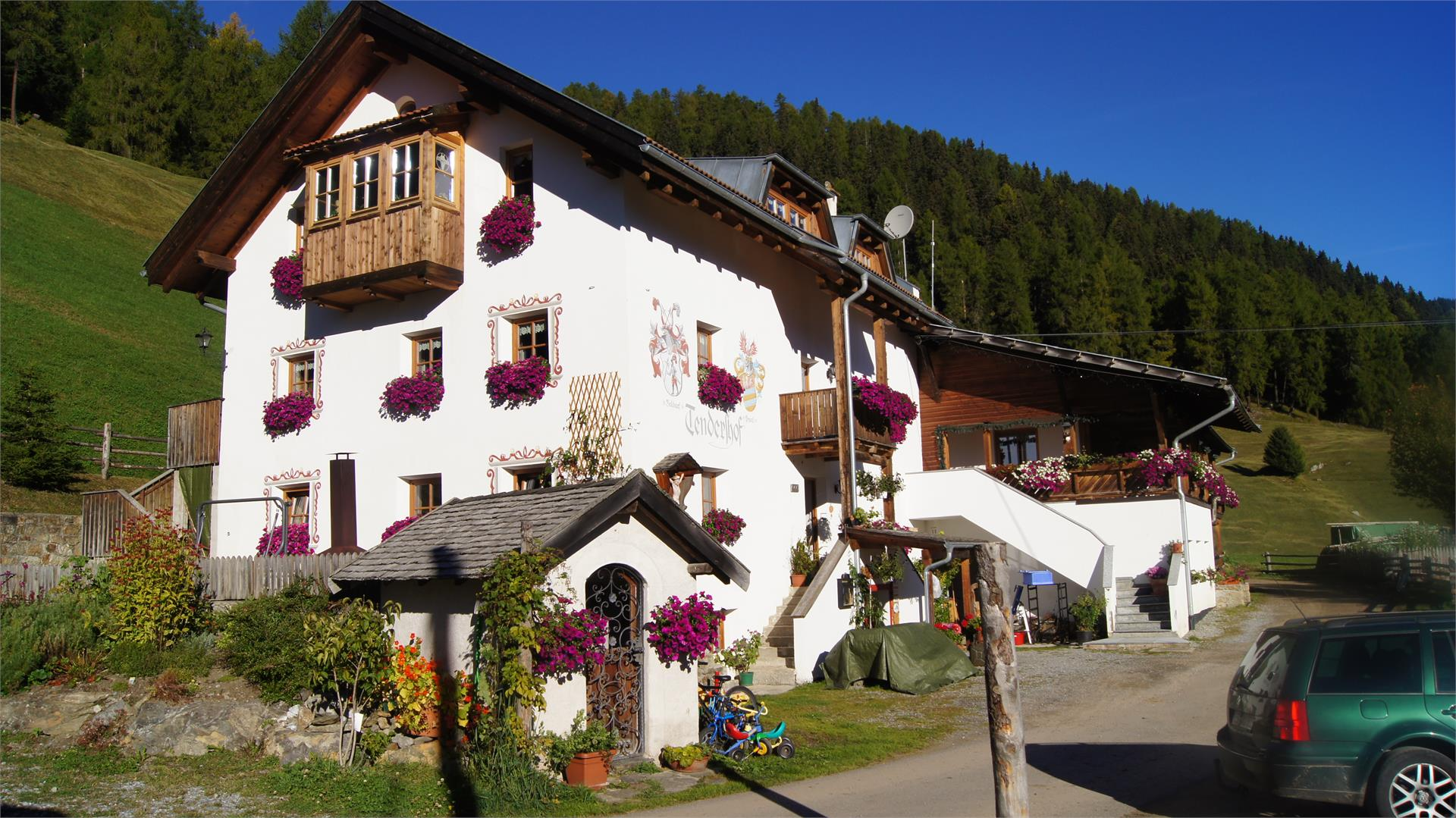 Tendershof in summer