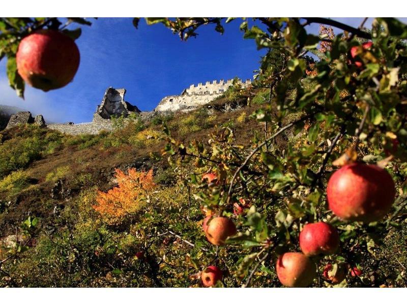 Apfel trifft Burg