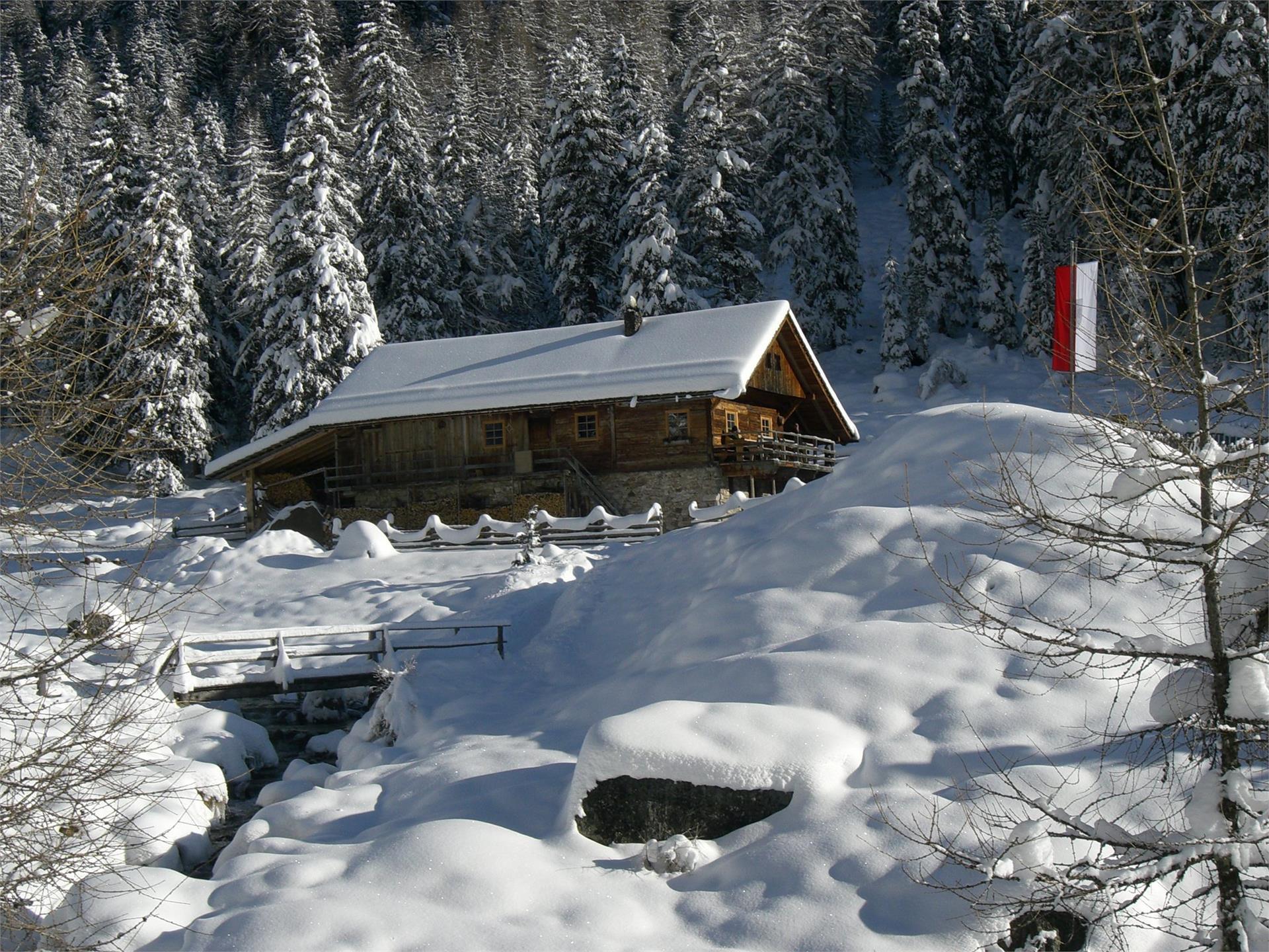 Winter hiking to the Lercher Alp Hut