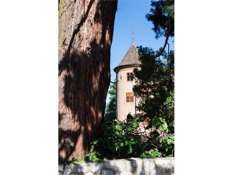 Castello Spauregg