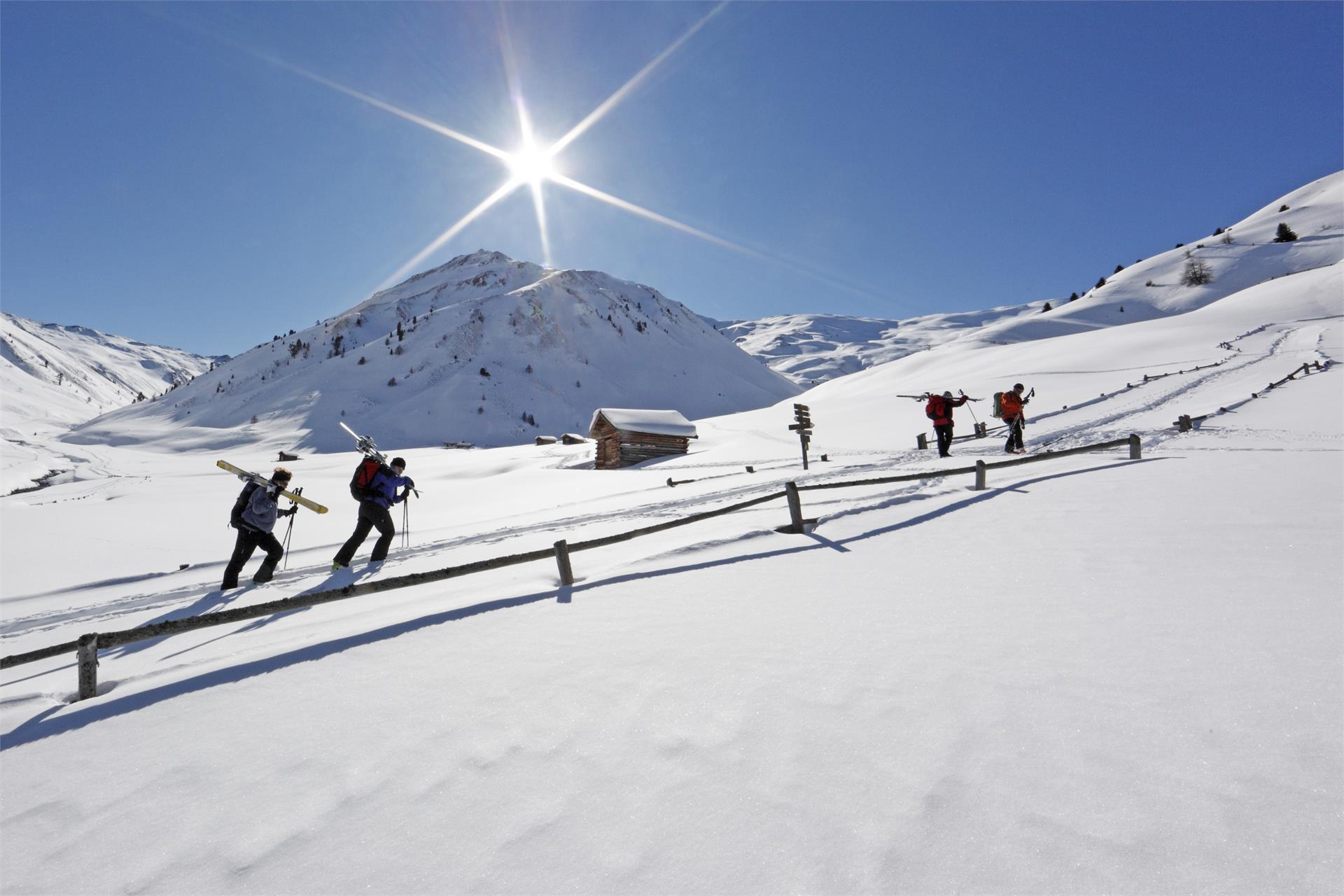 Ski Tour to the Tuckettspitze Peak