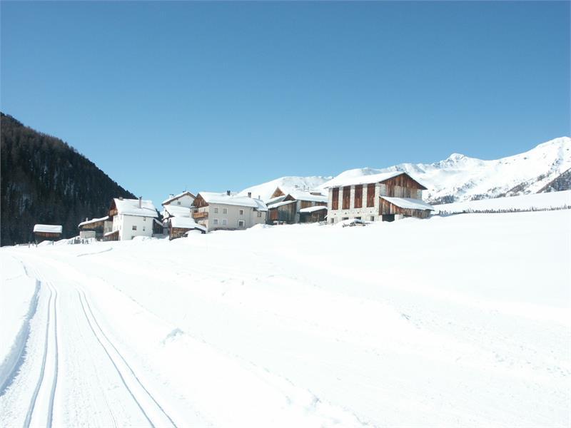 Winter in Langtaufers